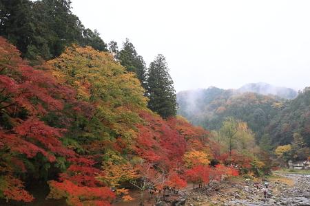 0911_kourankei_020