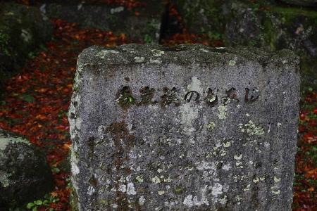 0911_kourankei_167