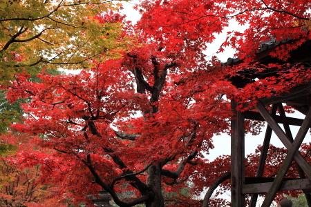 0911_kyoto_061
