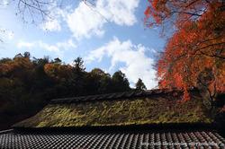 1011_kyoto_049_2