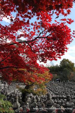 1011_kyoto_065