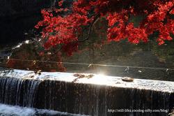 1011_kyoto_125
