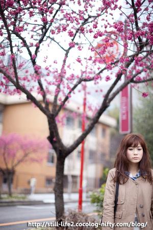 1103hiromi_s_440