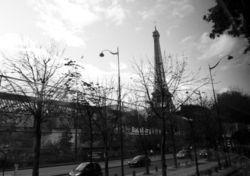 1011_03_euro_027